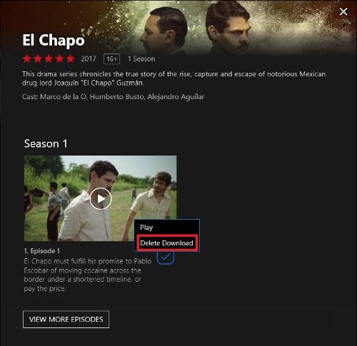 Cómo descargar películas de Netflix en Windows 10