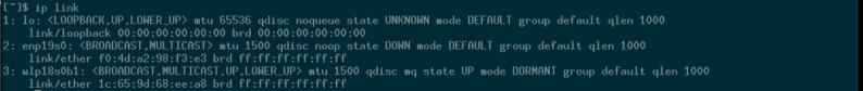 Cómo usar Netctl en Arch Linux para configurar una conexión de red