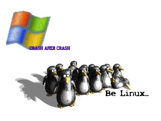 Excelentes pruebas de que a los usuarios de Linux no les gusta Windows (y tal vez Mac)
