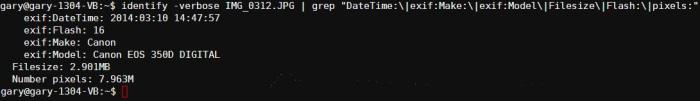 Gestión de los datos Exif en sus fotos desde la línea de comandos[Linux]
