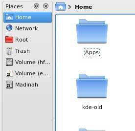 Maestro Delfín en KDE 4